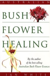 Bush Flower Healing cover